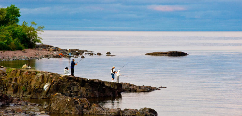people fishing on the shore